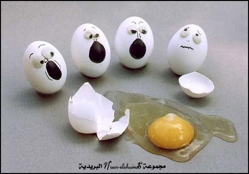 فنون الرسم على البيض Egg-12