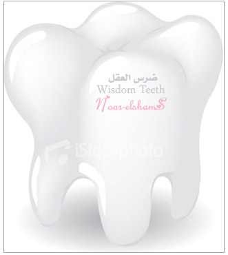 essay on wisdom teeth I have to write a reflective narrative essay about myself a lot about is when i got my wisdom teeth reflective essay over wisdom tooth.